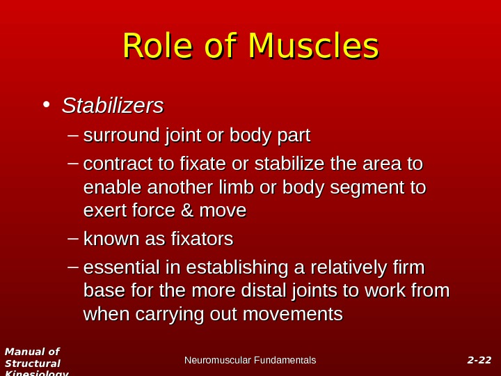 Manual of Structural Kinesiology Neuromuscular Fundamentals 2 -2 - 2222 Role of Muscles • Stabilizers –