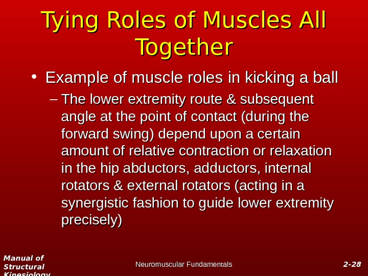 Manual of Structural Kinesiology Neuromuscular Fundamentals 2 -2 - 2828 Tying Roles of Muscles All Together