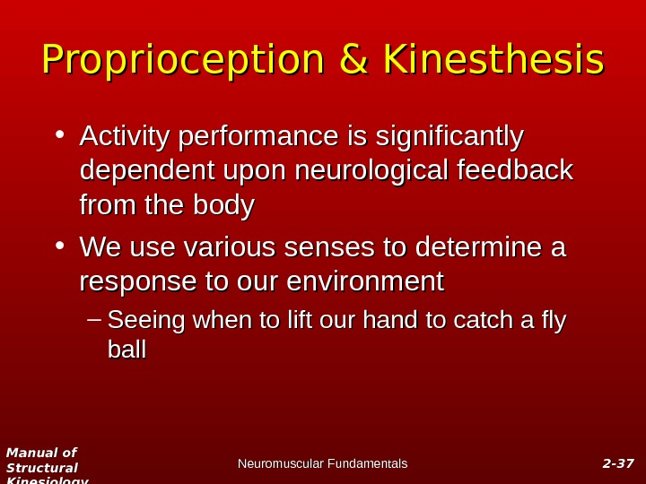 Manual of Structural Kinesiology Neuromuscular Fundamentals 2 -2 - 3737 Proprioception & Kinesthesis • Activity performance