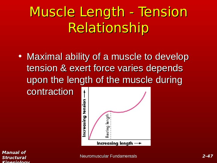 Manual of Structural Kinesiology Neuromuscular Fundamentals 2 -2 - 4747 Muscle Length - Tension Relationship •