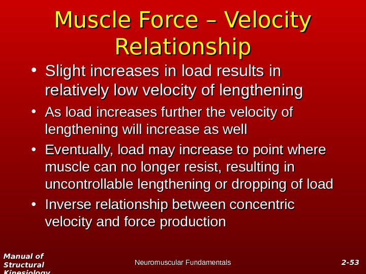 Manual of Structural Kinesiology Neuromuscular Fundamentals 2 -2 - 5353 Muscle Force – Velocity Relationship •