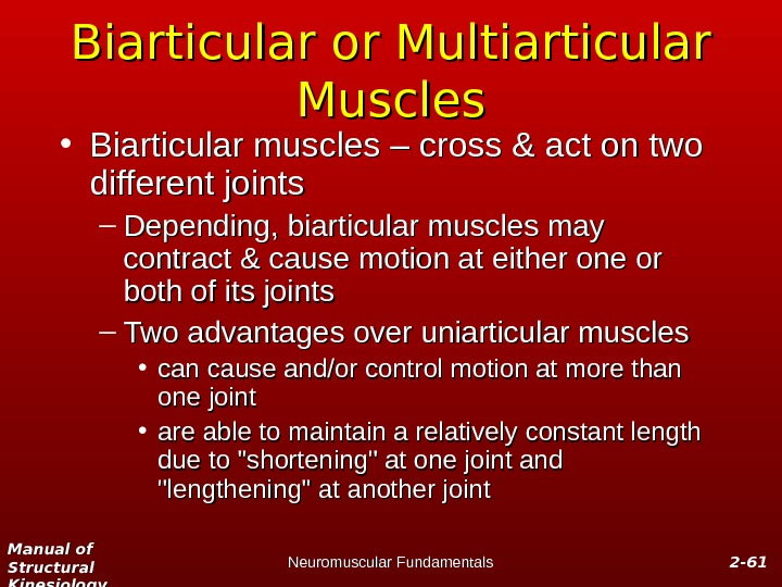 Manual of Structural Kinesiology Neuromuscular Fundamentals 2 -2 - 6161 Biarticular or Multiarticular Muscles • Biarticular