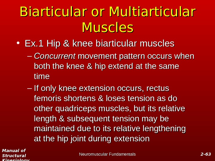 Manual of Structural Kinesiology Neuromuscular Fundamentals 2 -2 - 6363 Biarticular or Multiarticular Muscles • Ex.