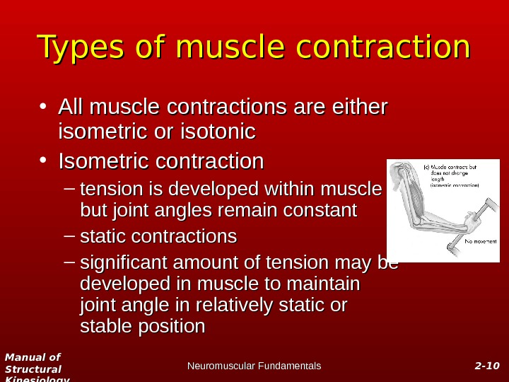 Manual of Structural Kinesiology Neuromuscular Fundamentals 2 -2 - 1010 Types of muscle contraction • All