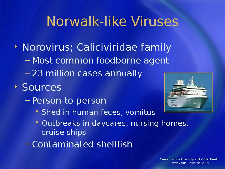 Center for Food Security and Public Health  Iowa State University 2004 Norwalk-like Viruses • Norovirus;