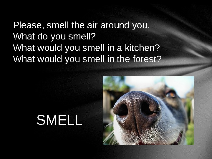 Please, smell the air around you.  What do you smell?  What would you smell