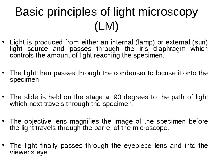 Basic principles of light microscopy (LM) • Light is produced from either an internal (lamp) or