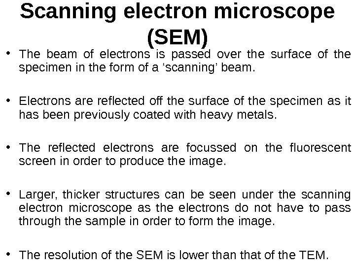 Scanning electron microscope (SEM) • The beam of electrons is passed over the surface of the