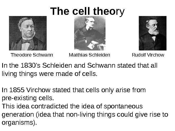 The cell theo ry Theodore Schwann Matthias Schleiden Rudolf Virchow In the 1830's Schleiden and Schwann
