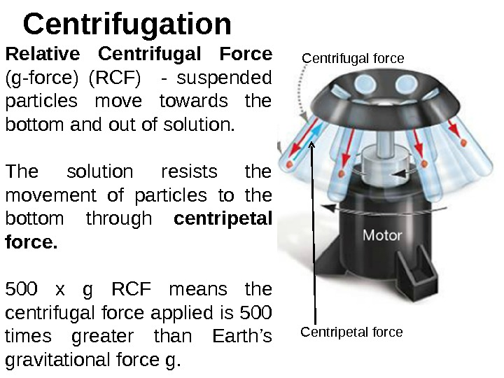 Centrifugation Relative Centrifugal Force (g-force) (RCF)  - suspended particles move towards the bottom and out