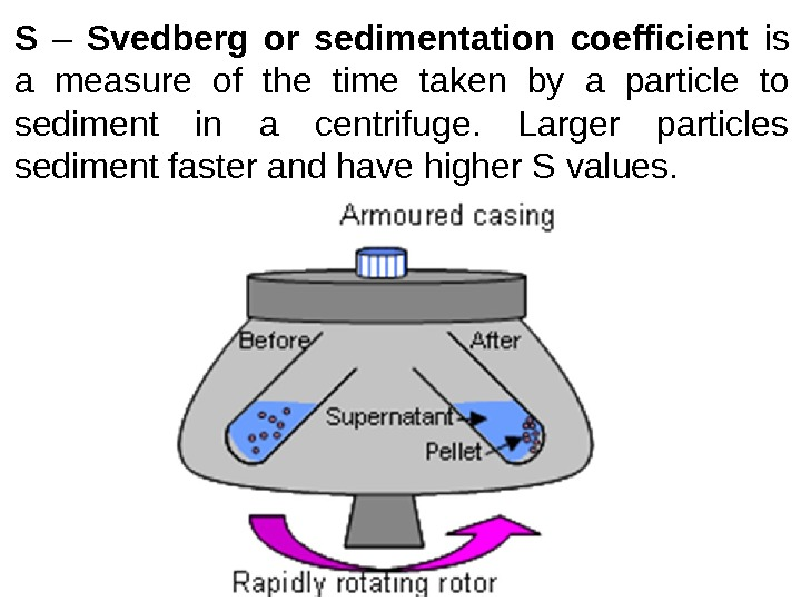 S  – Svedberg or sedimentation coefficient is a measure of the time taken by a
