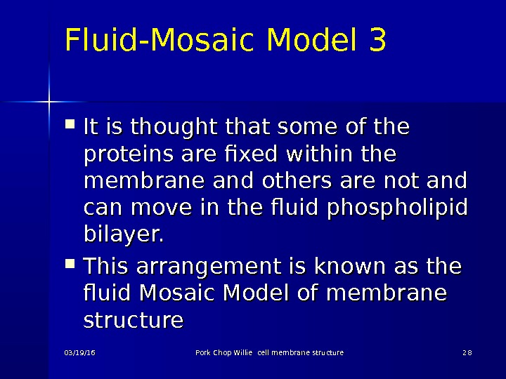 Fluid-Mosaic Model 3 It is thought that some of the proteins are fixed within the membrane