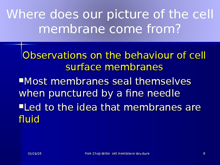 Where does our picture of the cell membrane come from? Observations on the behaviour of cell