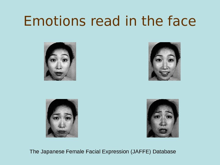 Emotions read in the face The Japanese Female Facial Expression (JAFFE) Database
