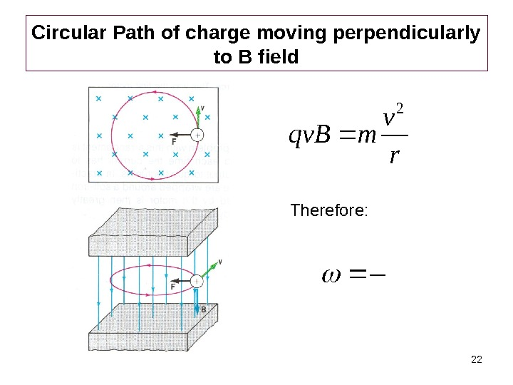 22 Circular Path of charge moving perpendicularly to B field rv mqv. B 2 Therefore: rv