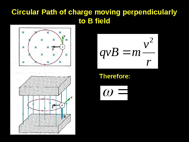8 Circular Path of charge moving perpendicularly to B field rv mqv. B 2 Therefore: rv
