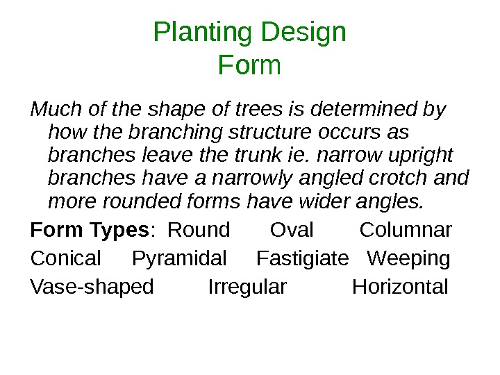 Planting Design Form Much of the shape of trees is determined by how the branching structure