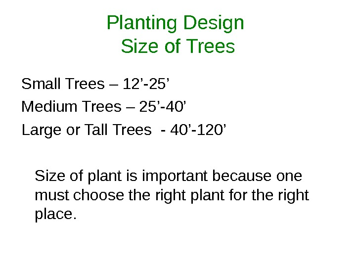 Planting Design Size of Trees Small Trees – 12'-25' Medium Trees – 25'-40' Large or Tall