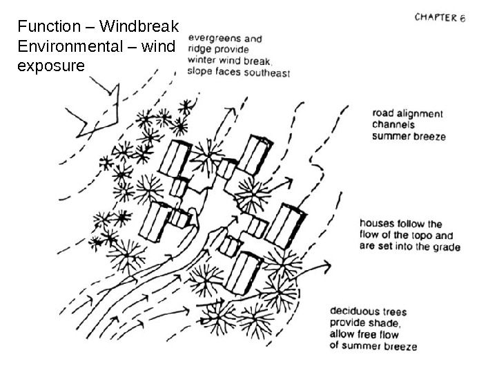 Function – Windbreak Environmental – wind exposure