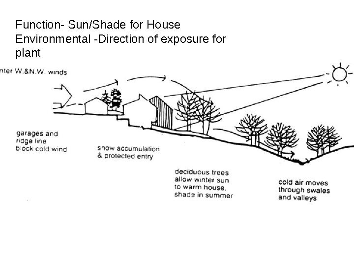 Function- Sun/Shade for House Environmental -Direction of exposure for plant
