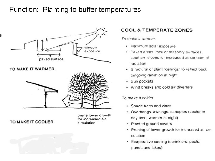 Function:  Planting to buffer temperatures