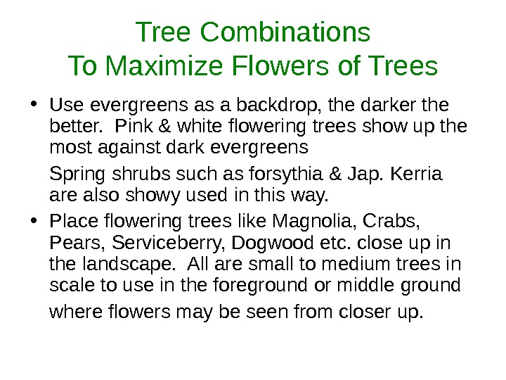 Tree Combinations To Maximize Flowers of Trees • Use evergreens as a backdrop, the darker the