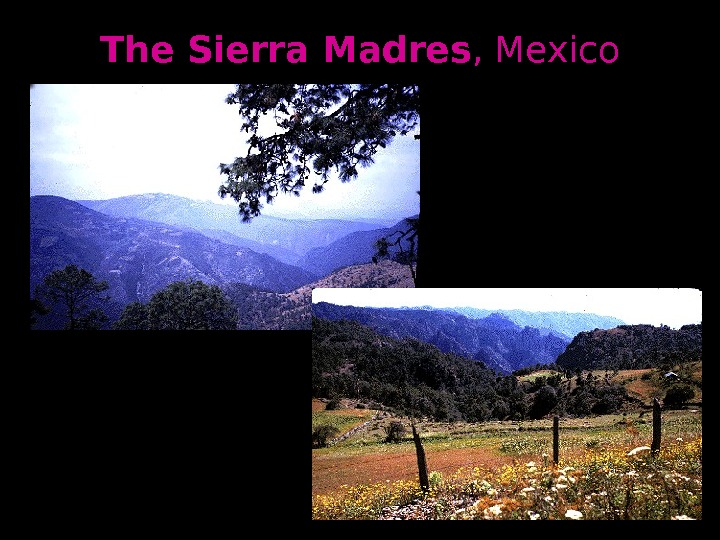 The Sierra Madres , Mexico