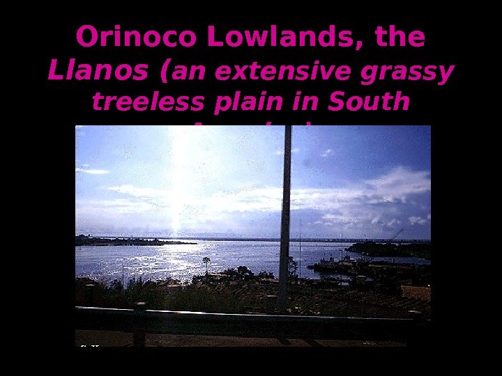 Orinoco Lowlands, the Llanos ( an extensive grassy treeless plain in South America)