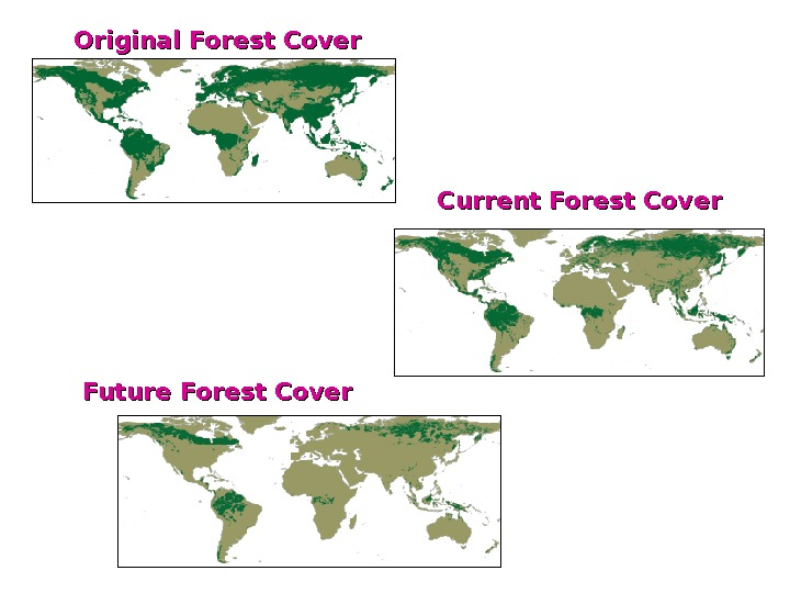 Original Forest Cover Future Forest Cover Current Forest Cover