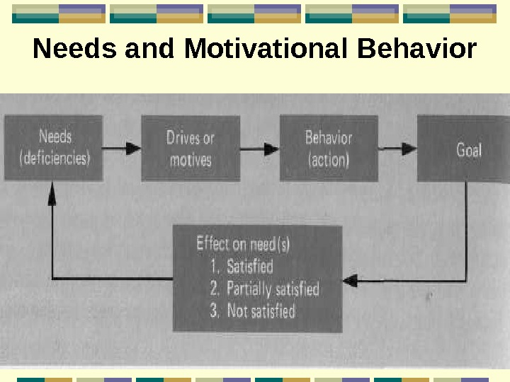 Needs and Motivational Behavior