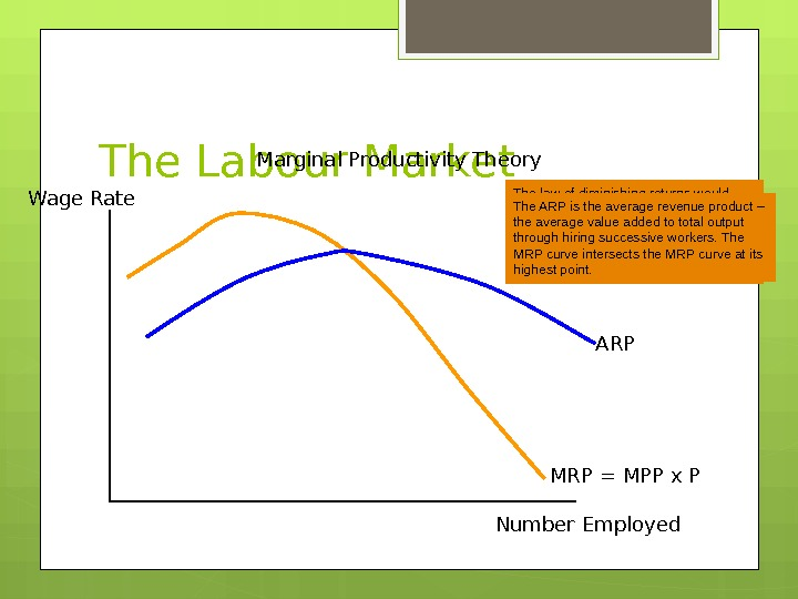 The Labour Market Marginal Productivity Theory Wage Rate Number Employed MRP = MPP x P ARPThe