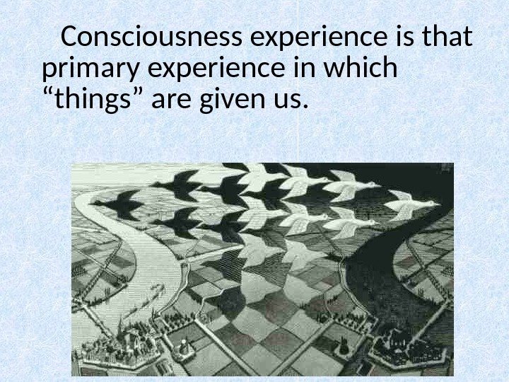 "Consciousness experience is that primary experience in which ""things"" are given us."