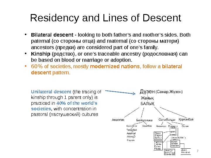 7 Residency and Lines of Descent • Bilateral descent - looking to both father's and mother's