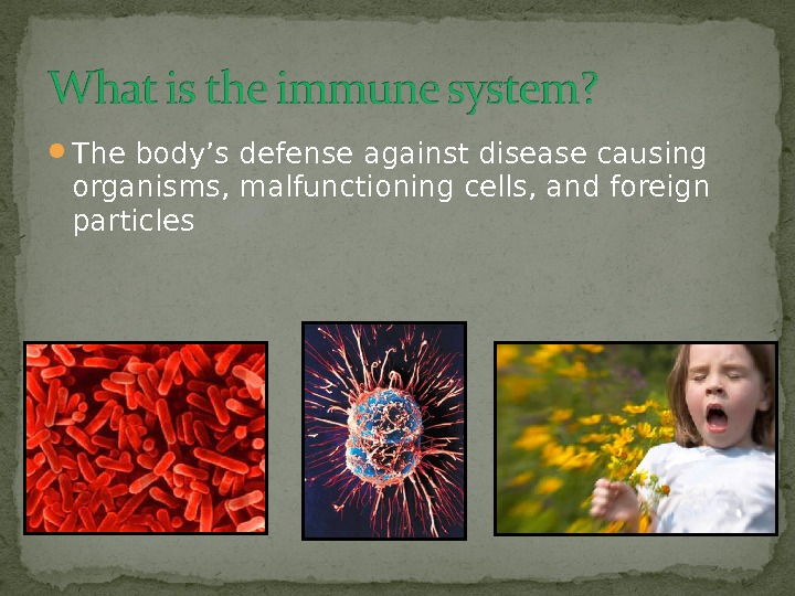 The body's defense against disease causing organisms, malfunctioning cells, and foreign particles
