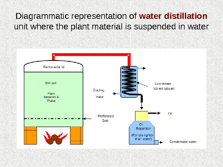 Diagrammatic representation of water distillation  unit where the plant material is suspended in