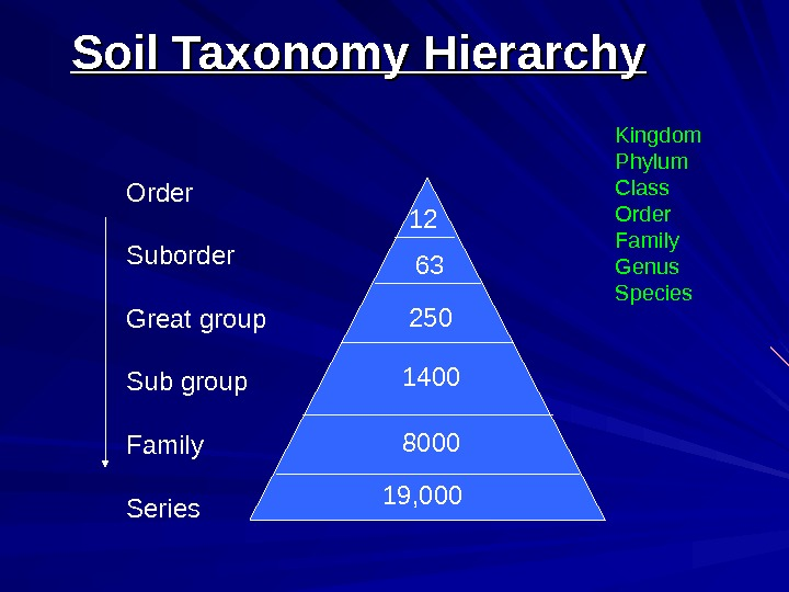 Order Suborder Great group Sub group Family Series 12 19, 000 Soil Taxonomy Hierarchy