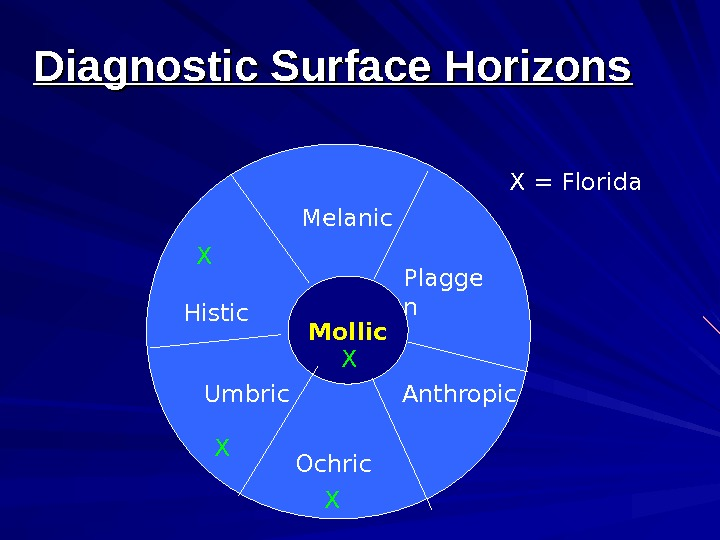 Mollic. Histic Umbric Ochric Melanic Plagge n Anthropic. X X X = Florida. Diagnostic