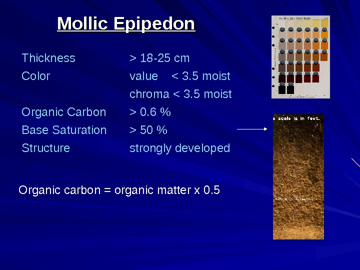 Mollic Epipedon Thickness  18 -25 cm Color value   3. 5 moist