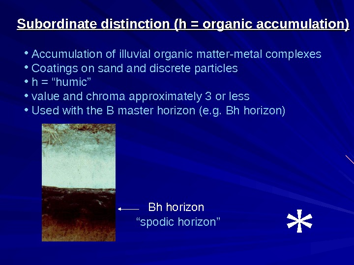 Subordinate distinction (h = organic accumulation) •  Accumulation of illuvial organic matter-metal complexes