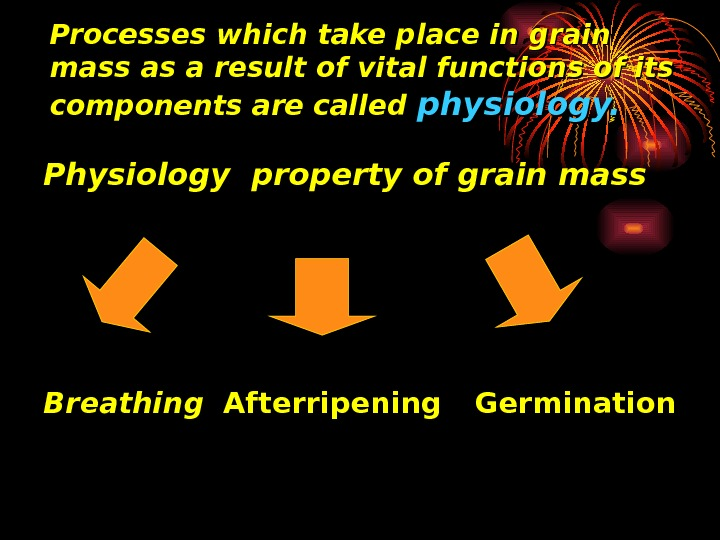 Processes which take place in grain mass as a result of vital functions of