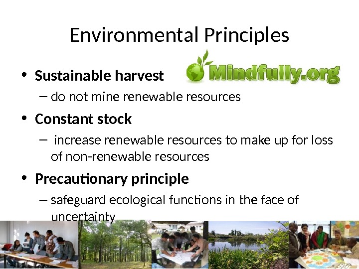 Environmental Principles • Sustainable harvest – do not mine renewable resources • Constant stock –