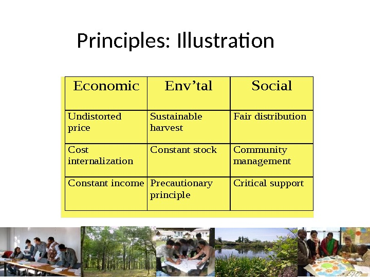 Principles: Illustration. Economic. Env'tal. Social Undistorted price Sustainable harvest Fair distribution Cost internalization Constant stock. Community