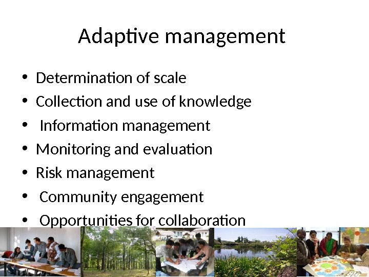 Adaptive management  • Determination of scale  • Collection and use of knowledge •