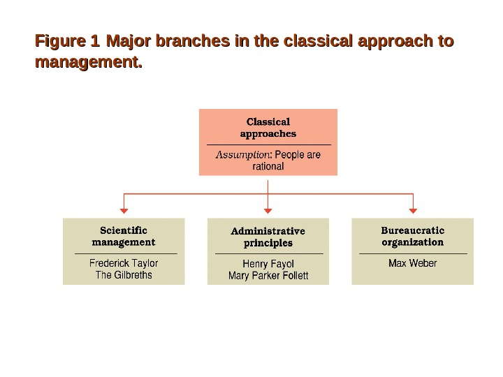Figure 1  Major branches in the classical approach to management.