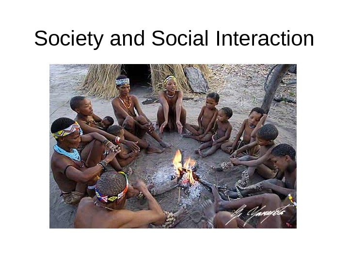 Society and Social Interaction