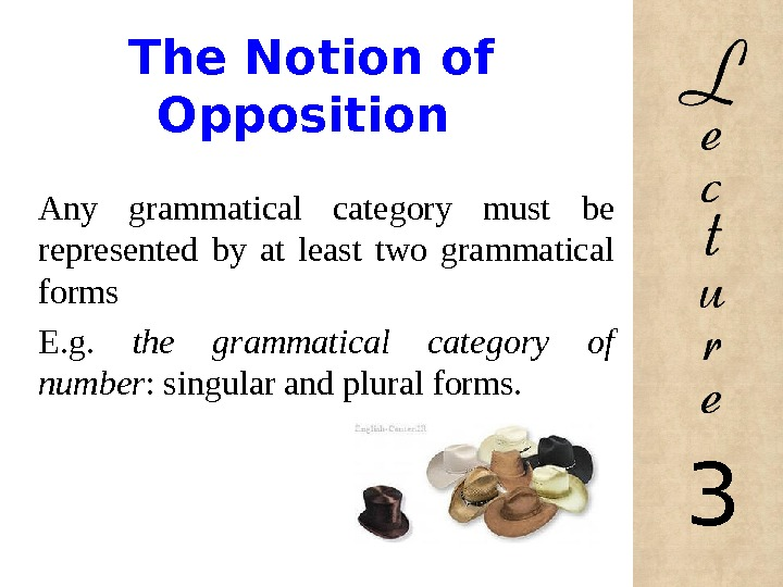 The Notion of Opposition Any grammatical category must be represented by at least two grammatical
