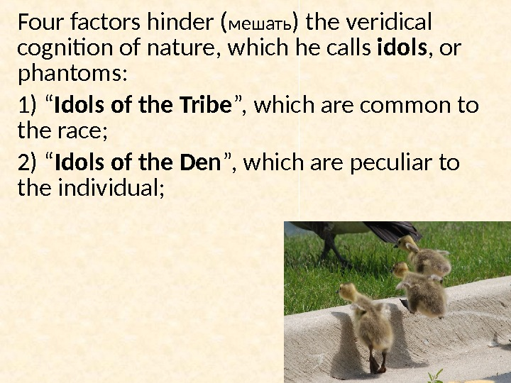 Four factors hinder ( мешать ) the veridical  cognition of nature, which he calls idols