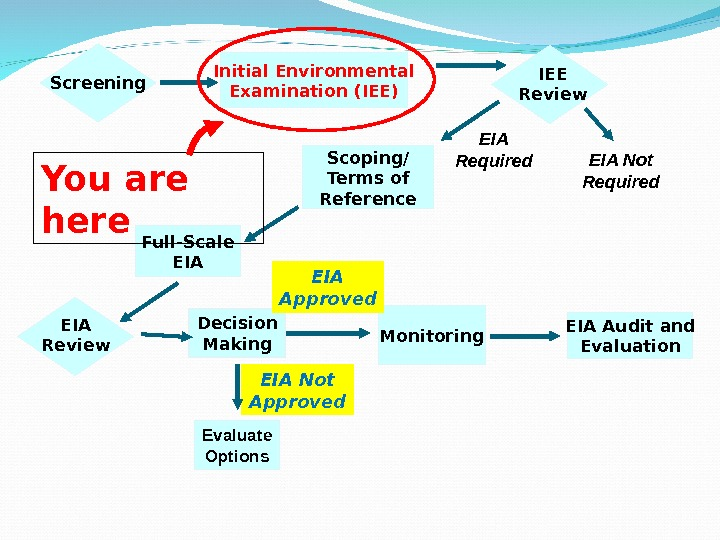 Screening Initial Environmental Examination (IEE) EIA Not Required. EIA Required Monitoring EIA Audit and Evaluation. IEE