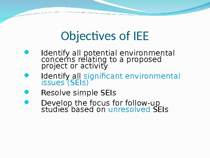 Objectives of IEE Identify all potential environmental concerns relating to a proposed project or activity Identify