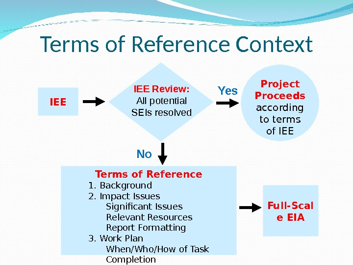 Terms of Reference Context IEE Project Proceeds according to terms of IEE Terms of Reference 1.